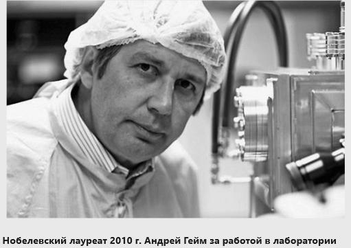 Андрей Гейм (1958)