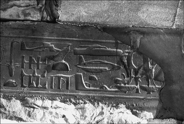 Эскадрильи фараонов?