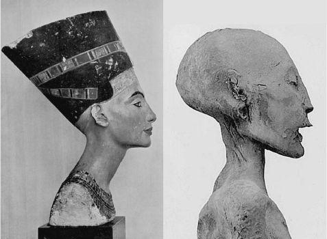 Вторая жизнь Нефертити