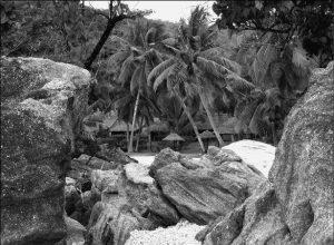 Несостоявшаяся экспедиция на Мадагаскар