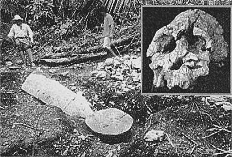 Загадка «лузирского человека»