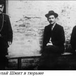 Загадка Николая Шмита