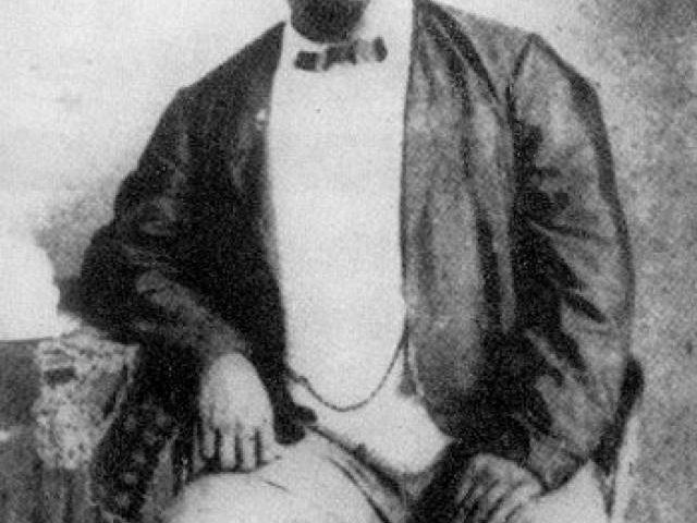 Уильям Генри Хейс (1829–1877)