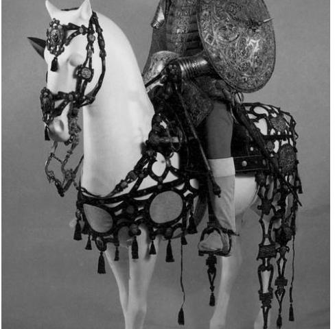 Баярд Пьер дю Терайль (1476–1524) – французский военачальник